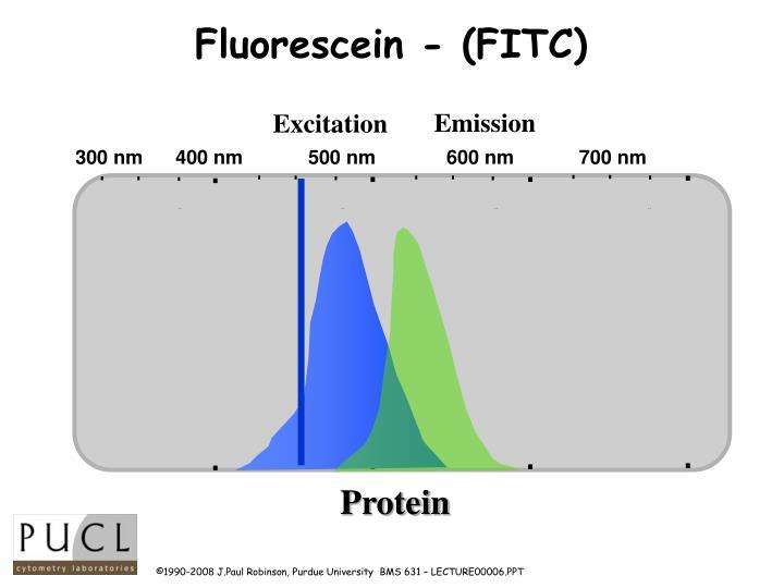 Fluorescein - (FITC)