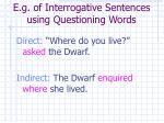 e g of interrogative sentences using questioning words14