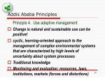 addis ababa principles15