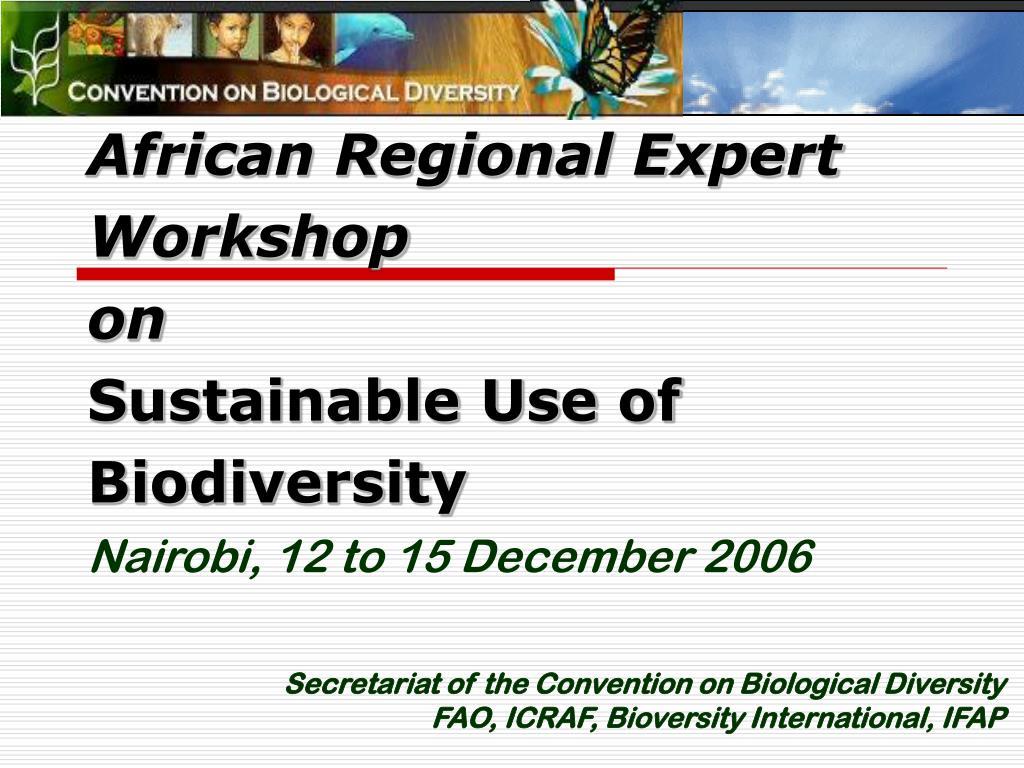 African Regional Expert Workshop