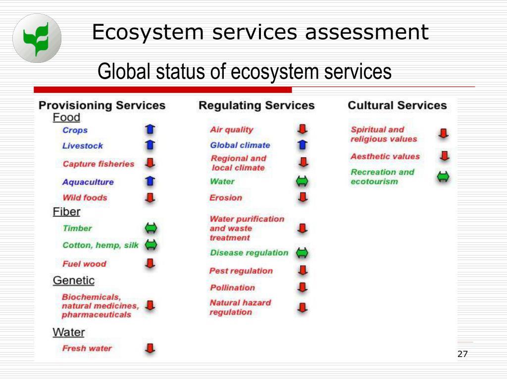 Ecosystem services assessment