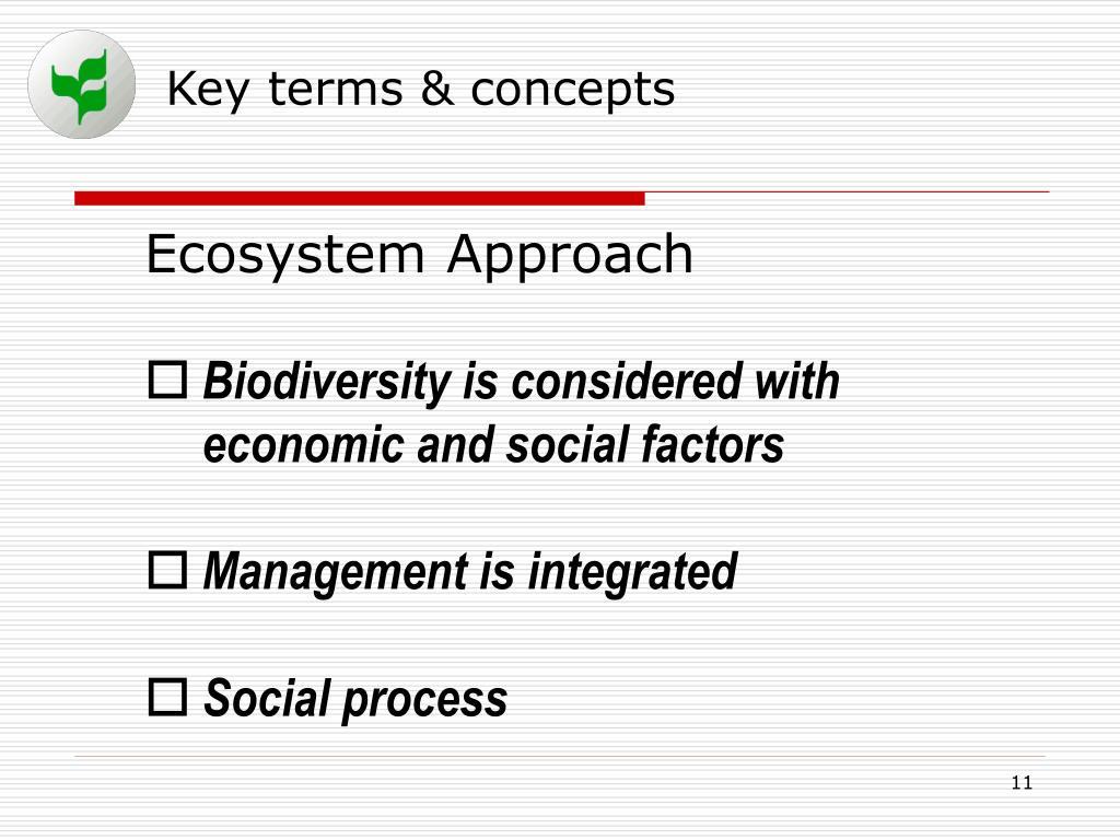 Key terms & concepts