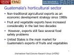 guatemala s horticultural sector