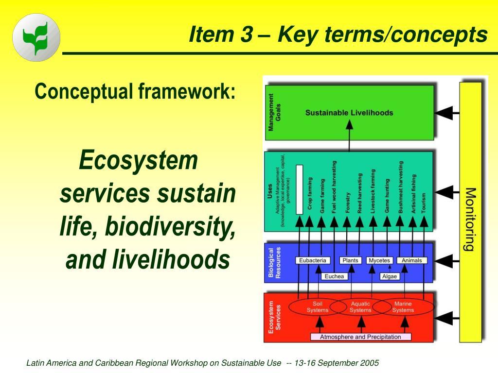 Item 3 – Key terms/concepts