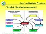 item 4 addis ababa principles32