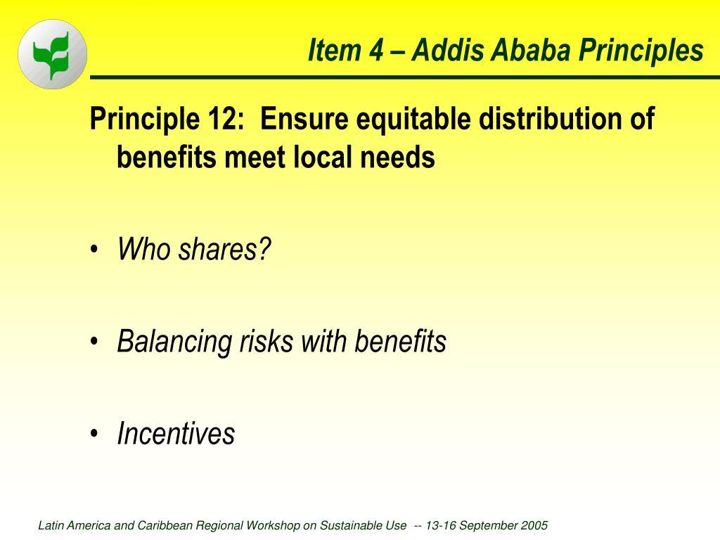 Item 4 – Addis Ababa Principles