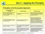 item 5 applying the principles54