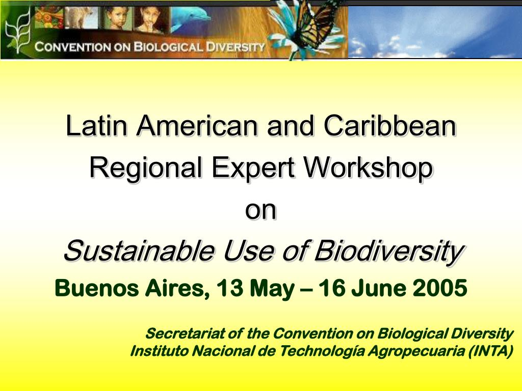 Latin American and Caribbean
