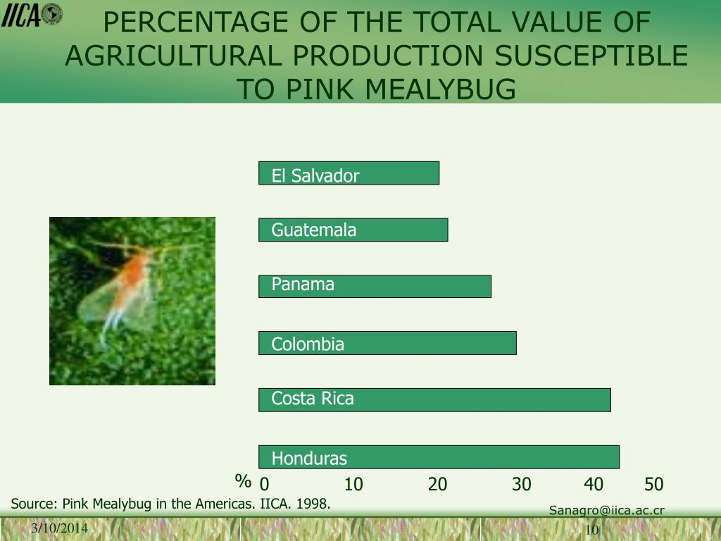 PERCENTAGE OF THE TOTAL VALUE OF AGRICULTURAL PRODUCTION SUSCEPTIBLE TO PINK MEALYBUG