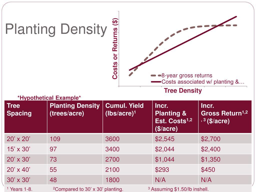 Planting Density