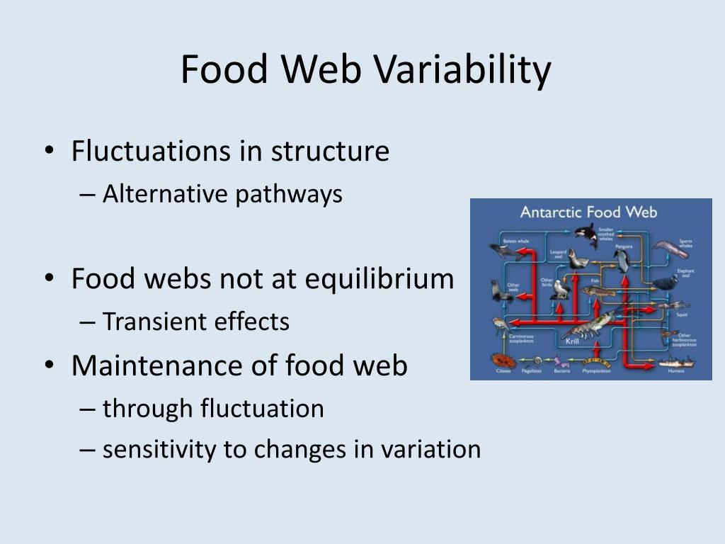 Food Web Variability