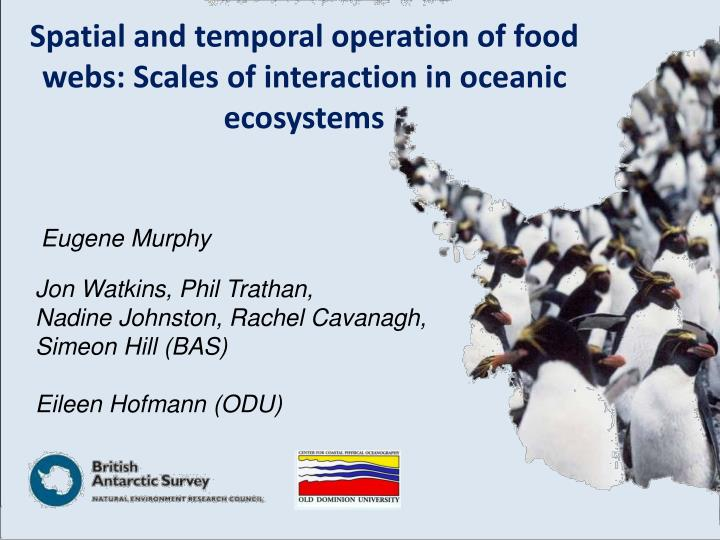 Spatial and temporal operation of food webs: Scales of interaction in oceanic ecosystems