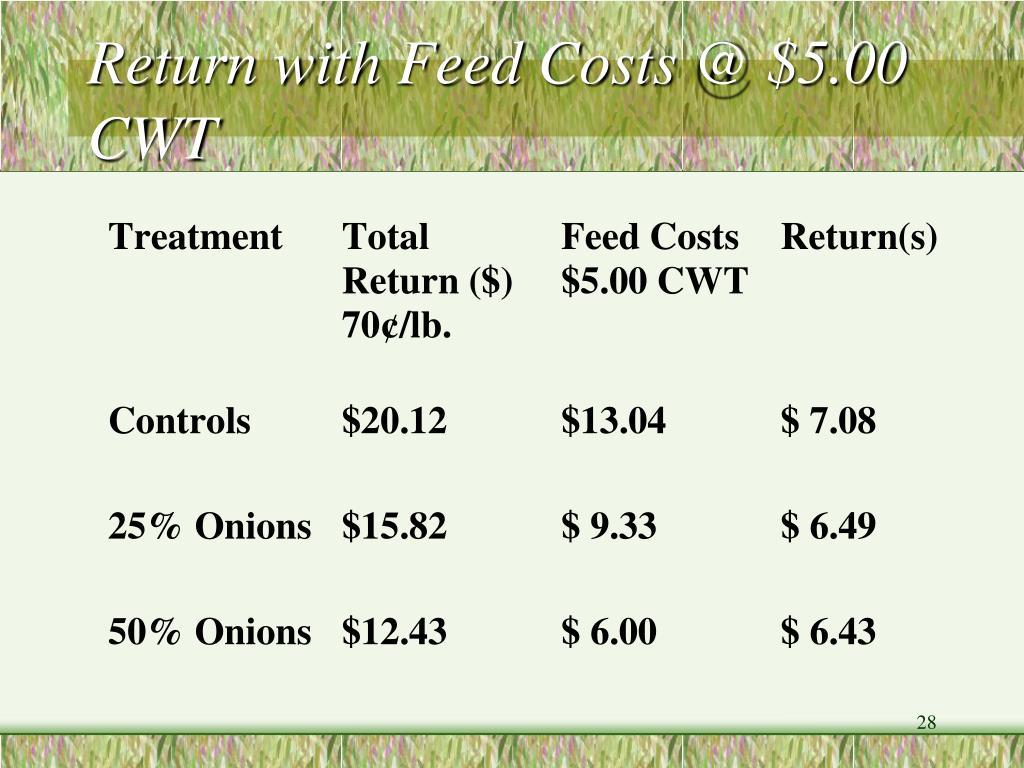 Return with Feed Costs @ $5.00 CWT