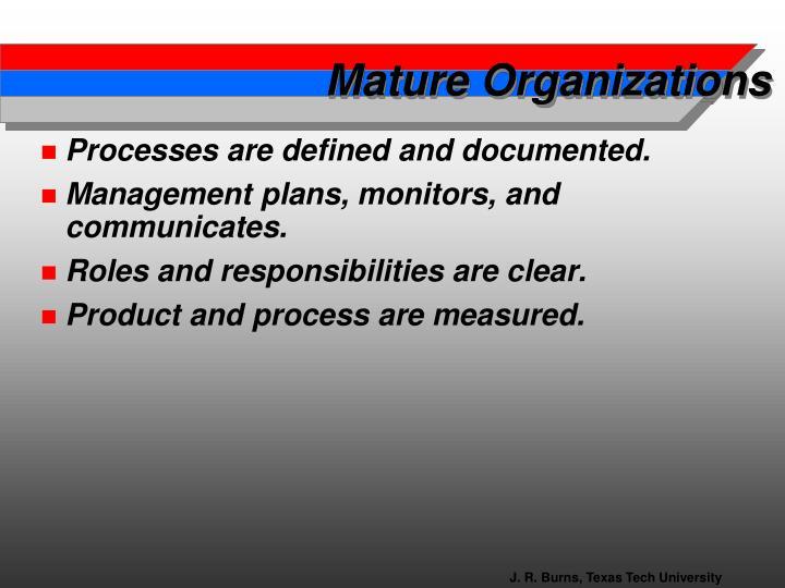 Mature Organizations