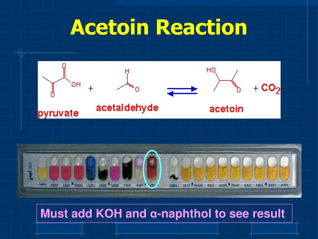 Acetoin Reaction