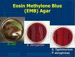 eosin methylene blue emb agar