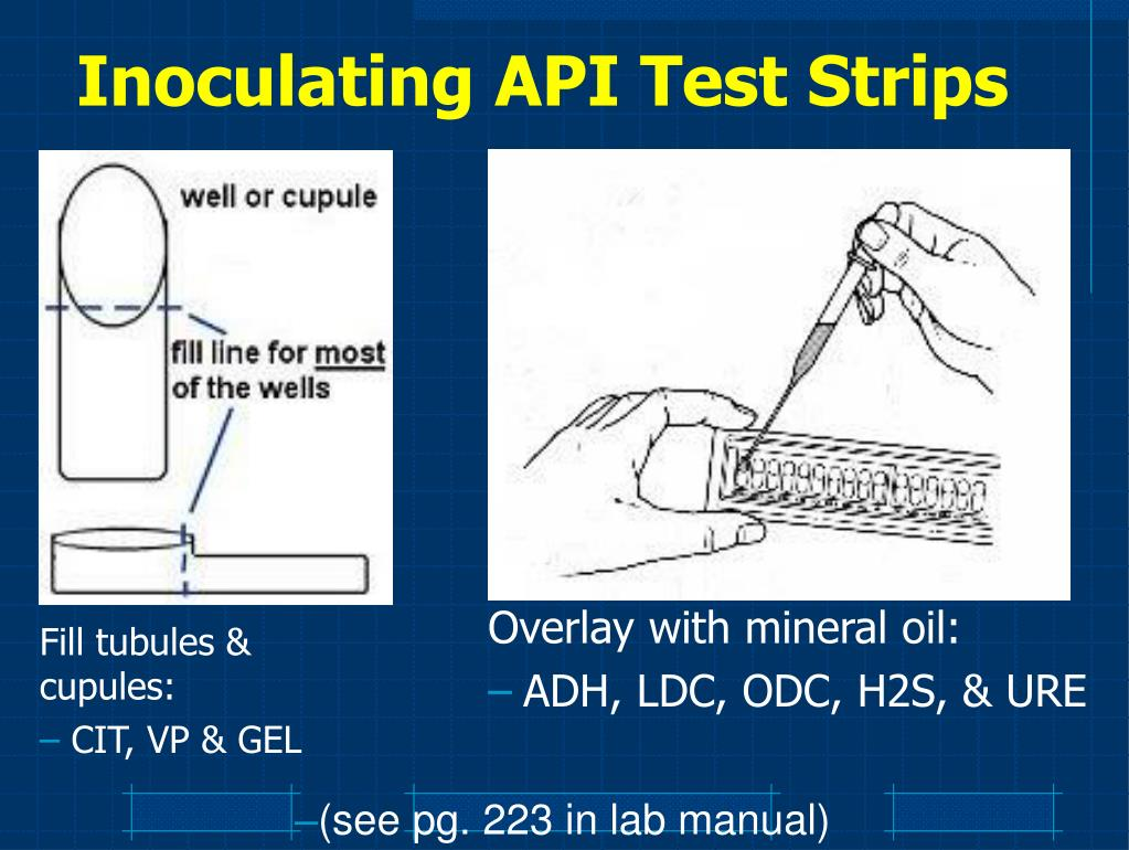 Inoculating API Test Strips
