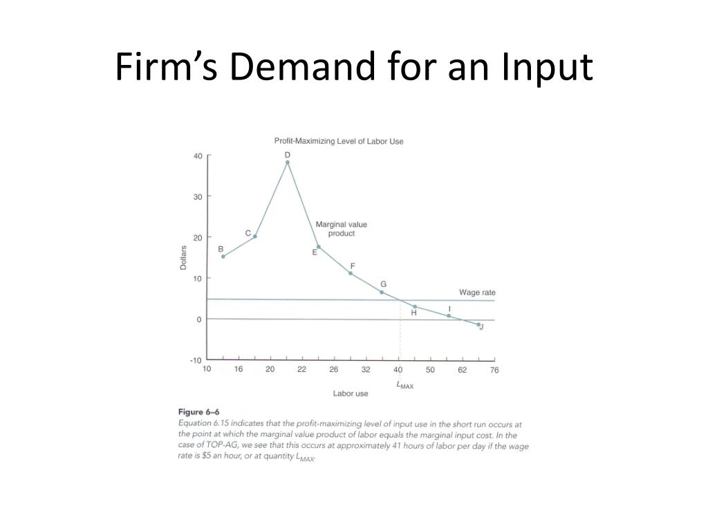 Firm's Demand for an Input