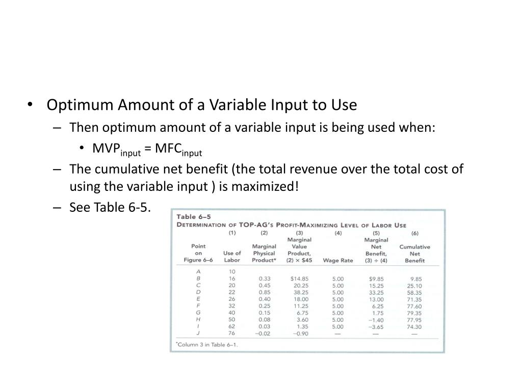 Optimum Amount of a Variable Input to Use