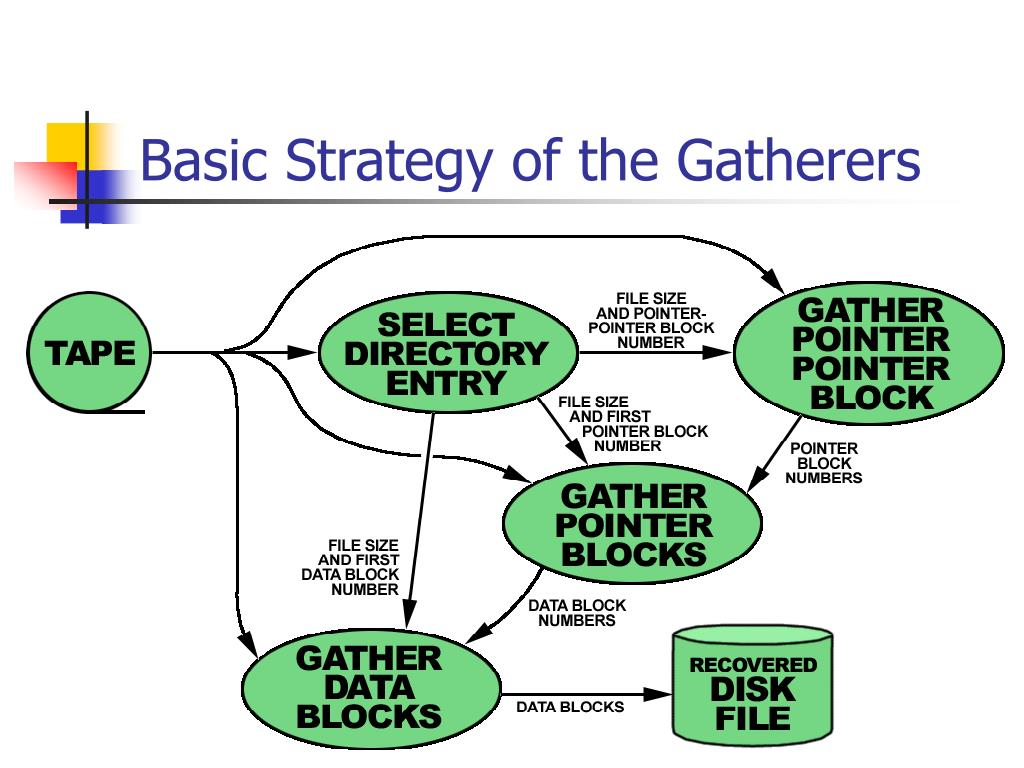 Basic Strategy of the Gatherers