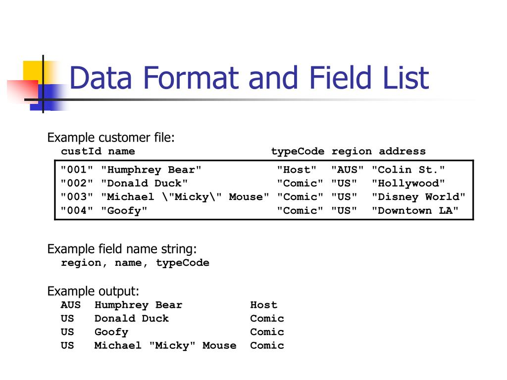 Data Format and Field List