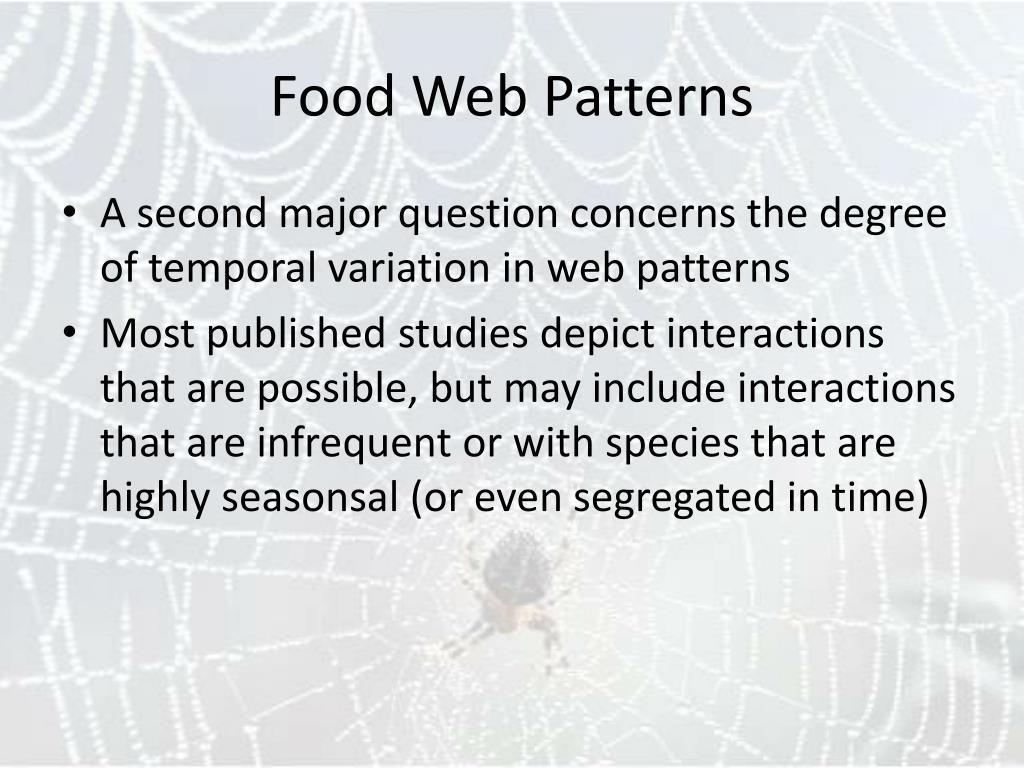 Food Web Patterns