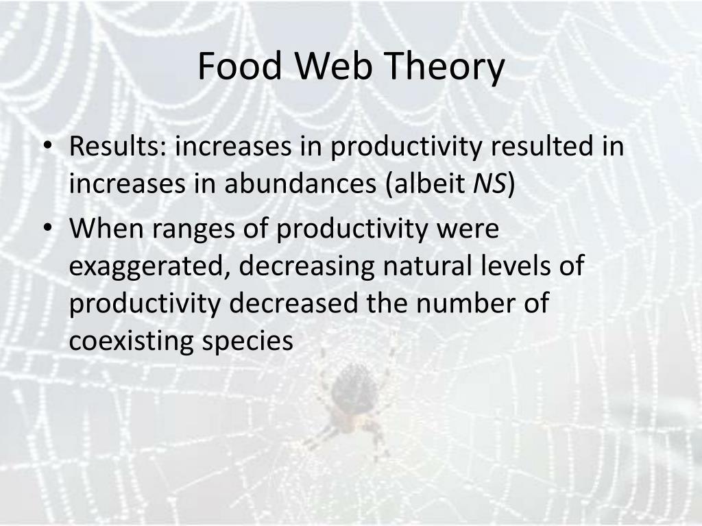 Food Web Theory