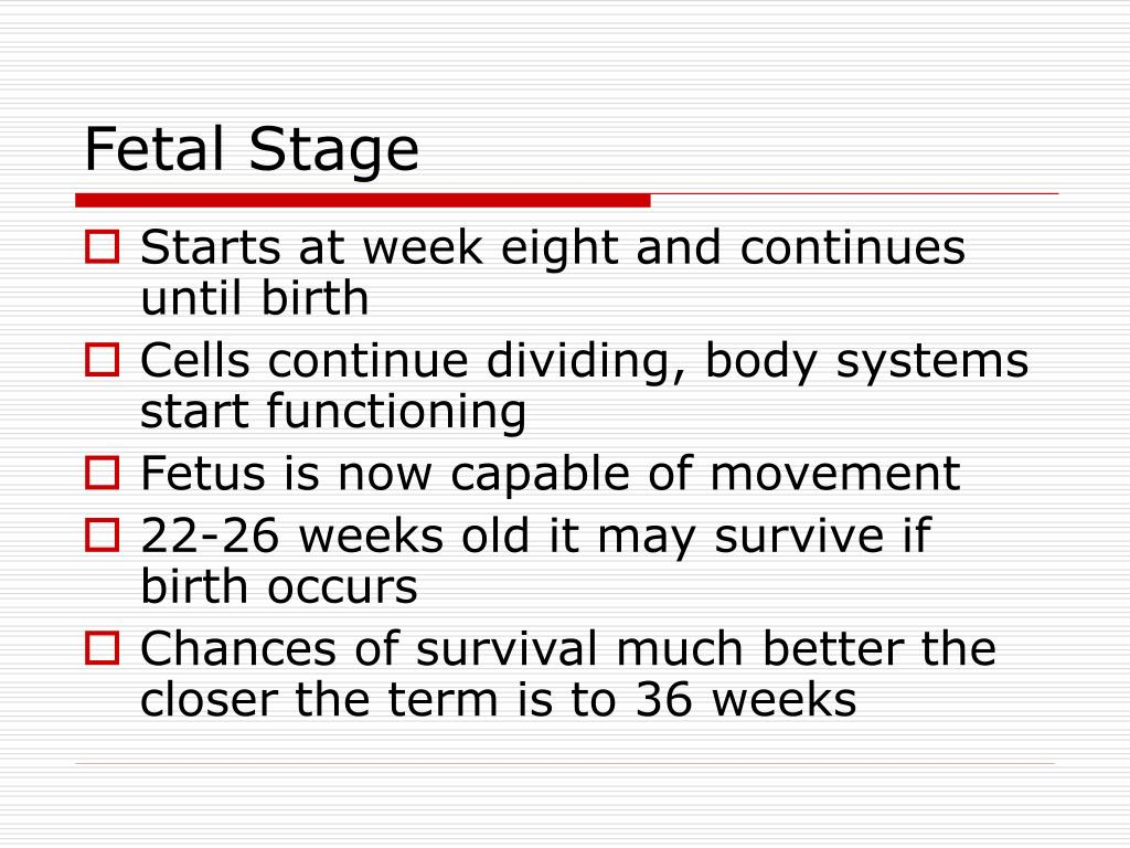 PPT - Human Development - Conception to Old Age PowerPoint ...