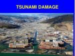 tsunami damage24