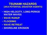 tsunami hazards aka potential disaster agents