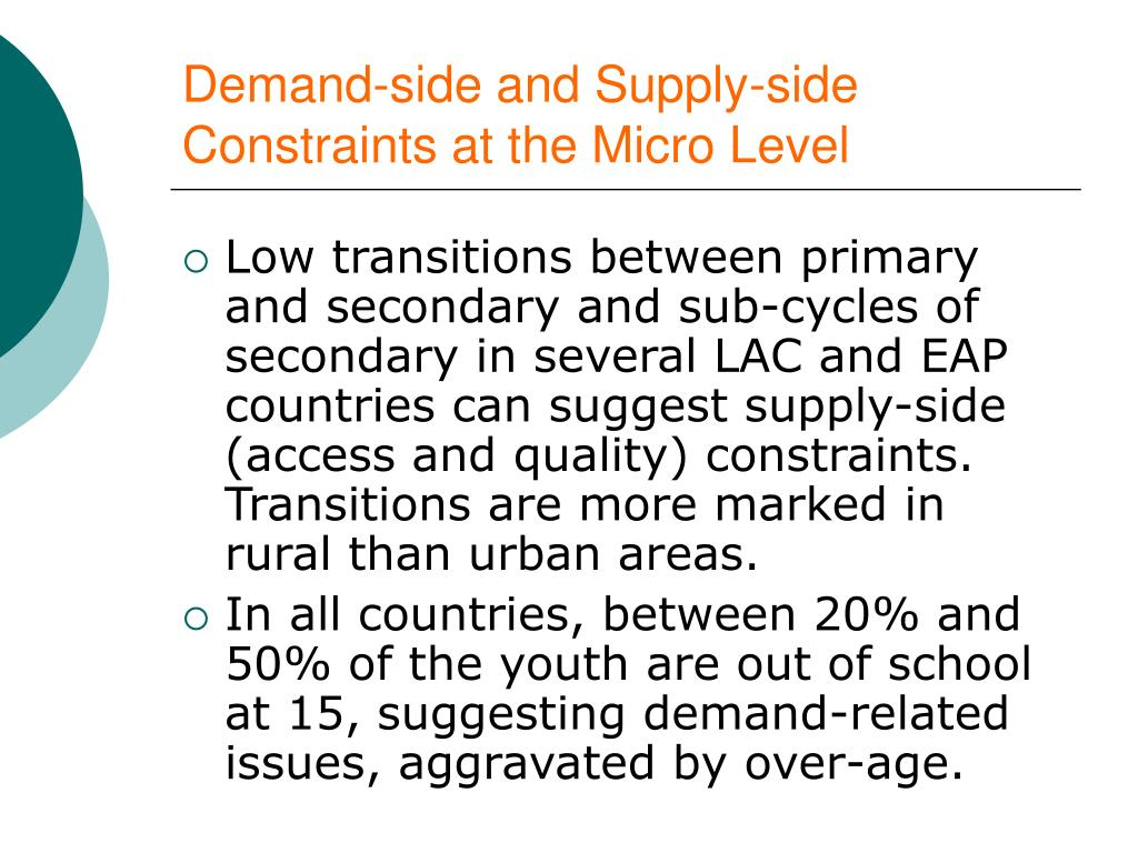 Demand-side and Supply-side Constraints at the Micro Level