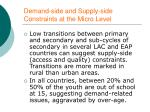 demand side and supply side constraints at the micro level