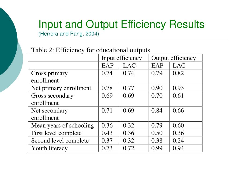Input and Output Efficiency Results