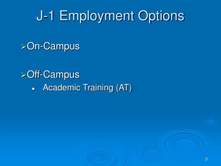 J-1 Employment Options