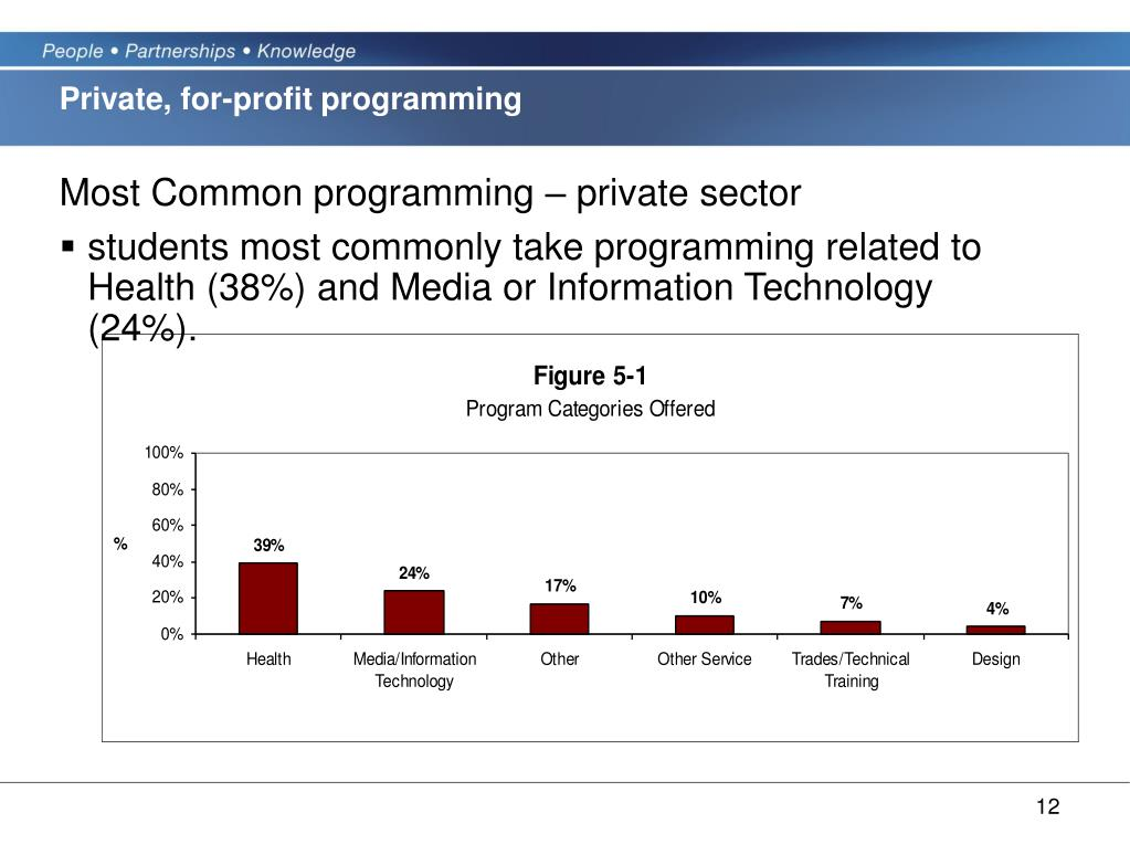 Private, for-profit programming