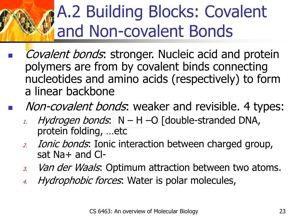 A.2 Building Blocks: Covalent and Non-covalent Bonds