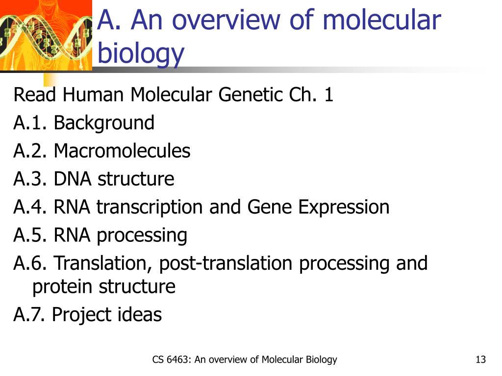 A. An overview of molecular biology