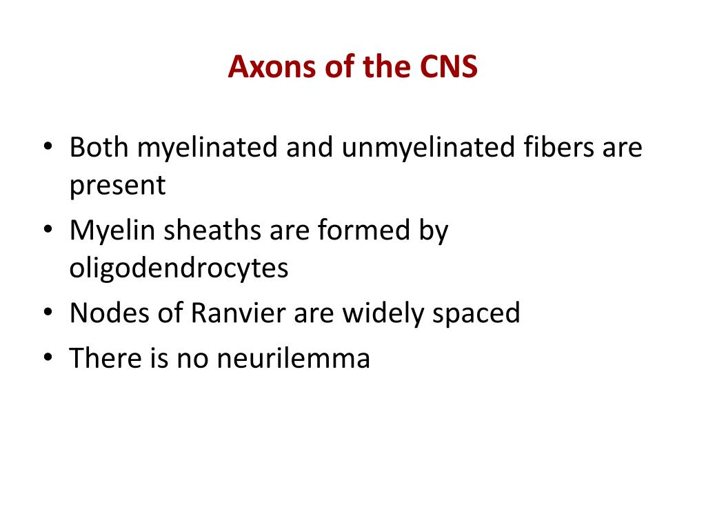 Axons of the CNS