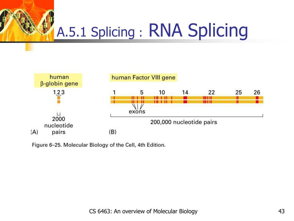 A.5.1 Splicing
