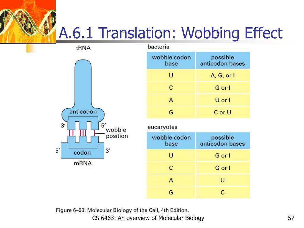 A.6.1 Translation: Wobbing Effect