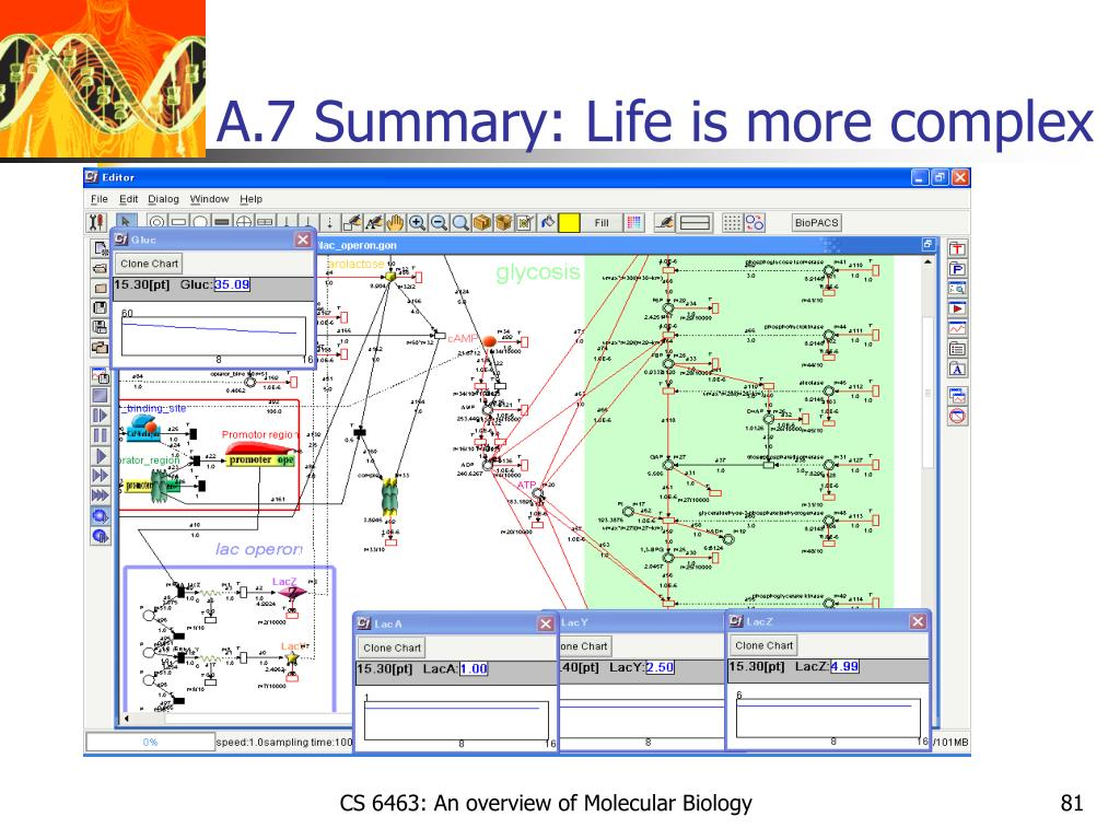 A.7 Summary: Life is more complex