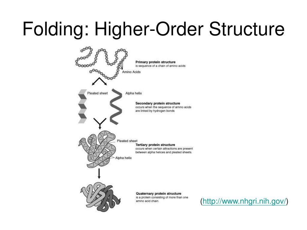 Folding: Higher-Order Structure