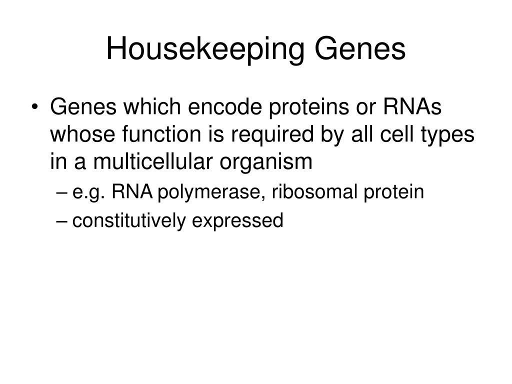 Housekeeping Genes