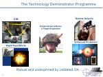 the technology demonstrator programme
