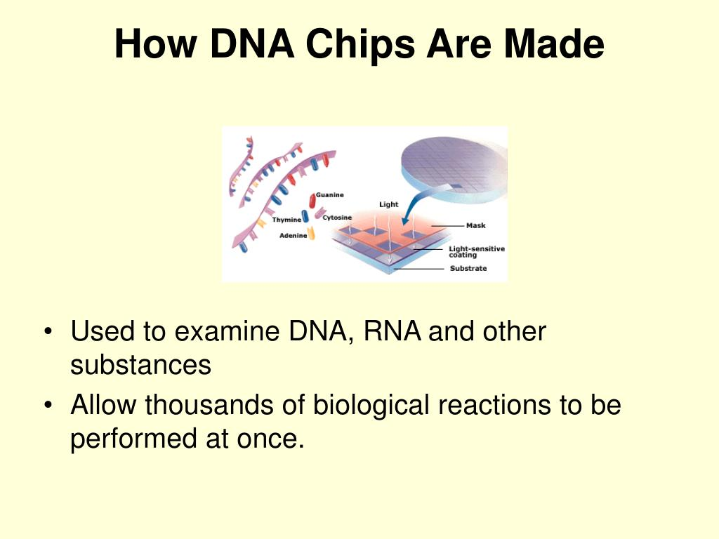 How DNA Chips Are Made