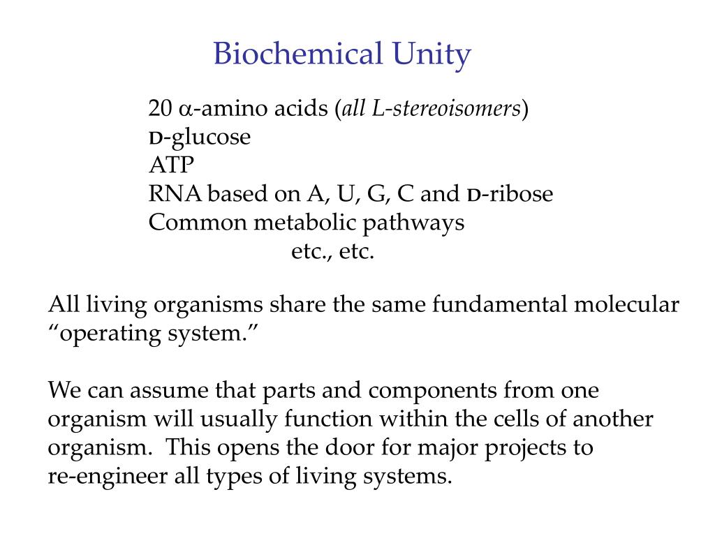 Biochemical Unity