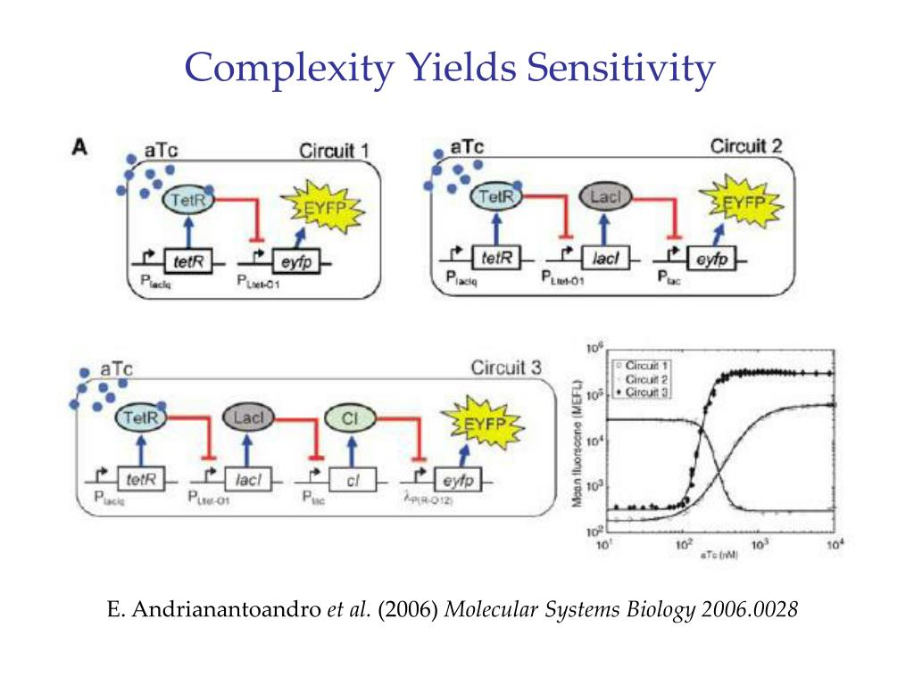 Complexity Yields Sensitivity