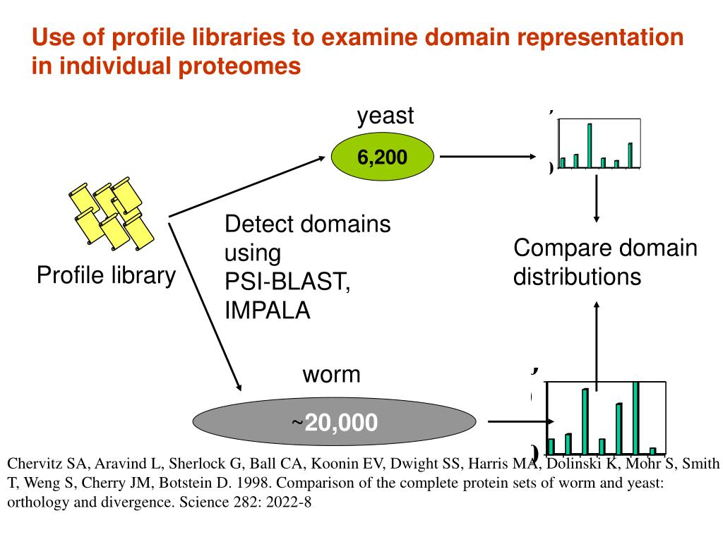 Use of profile libraries to examine domain representation