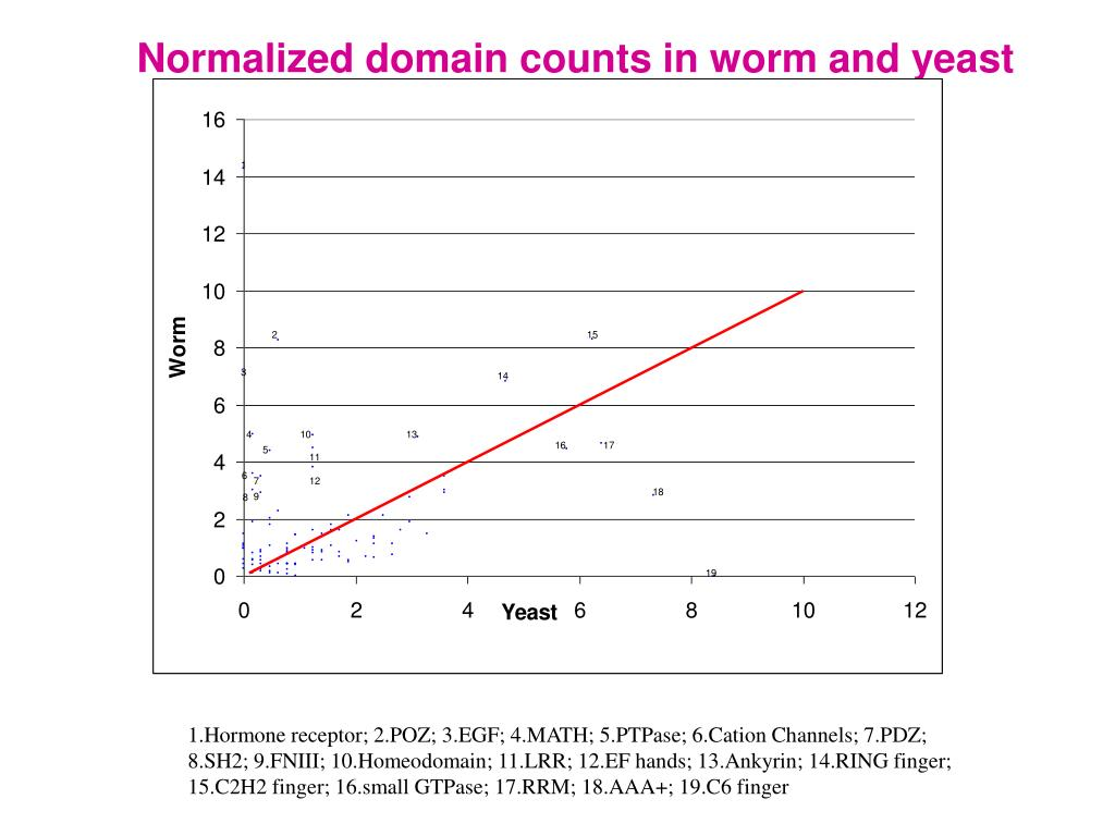 Normalized domain counts in worm and yeast