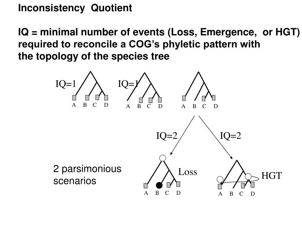 Inconsistency  Quotient
